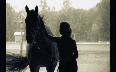 sell your dressage horse